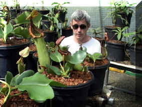Rob Cantley mit Nepenthes truncata black